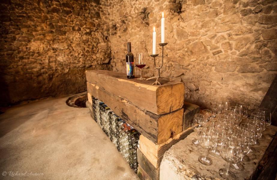 picture po bratislavských vínnych pivniciach