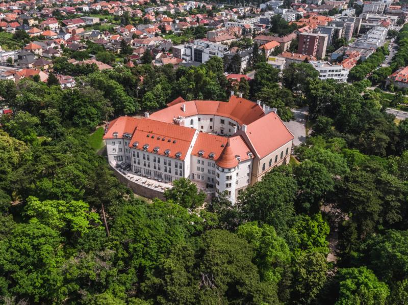 picture DESMOD na zámku