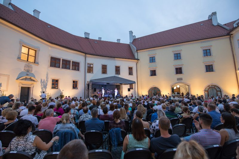 picture VIDIEK na zámku