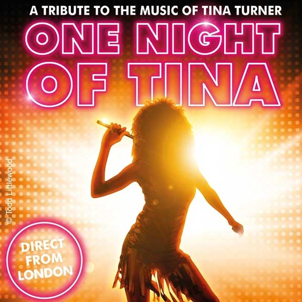 One Night of Tina - Linz