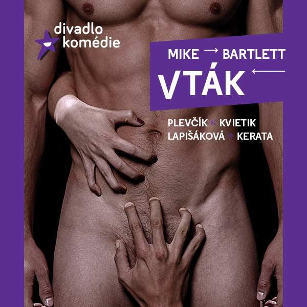 VTÁK - Mike BARTLETT - divadelná komédia